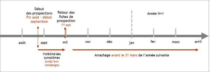 calendrier_prospections